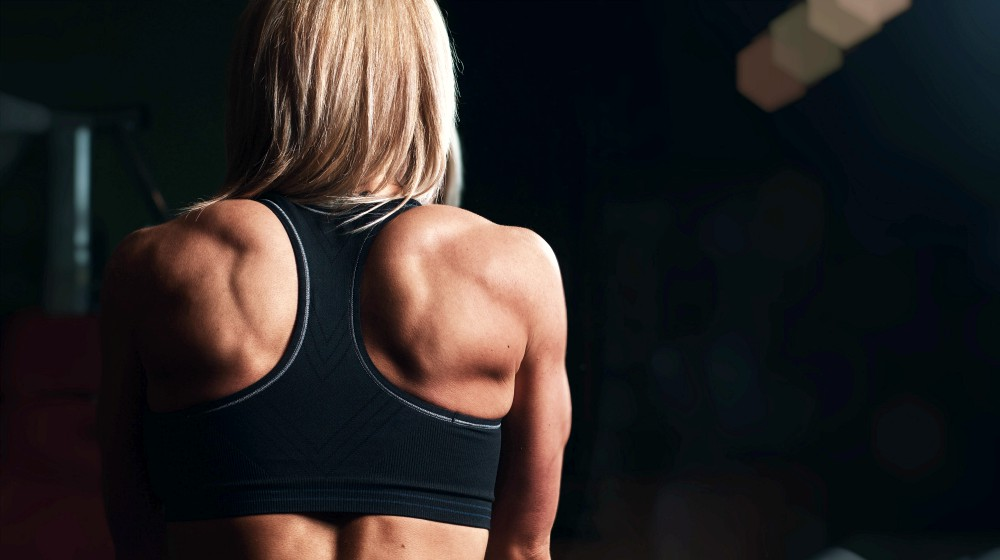 Feature | High Protein Diet Plans To Get Cut and Lean