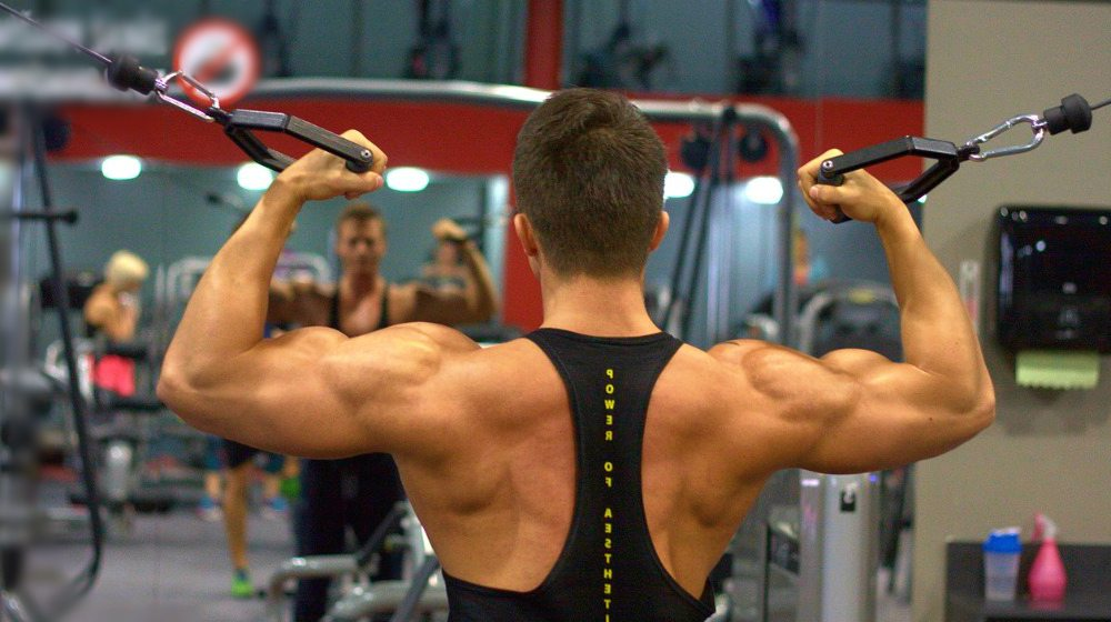 Feature   Best Back Workouts For Every Back Muscle
