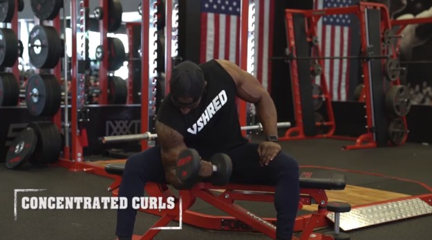 Concentrated Curls | The Top 5 Workouts For Bigger Arms