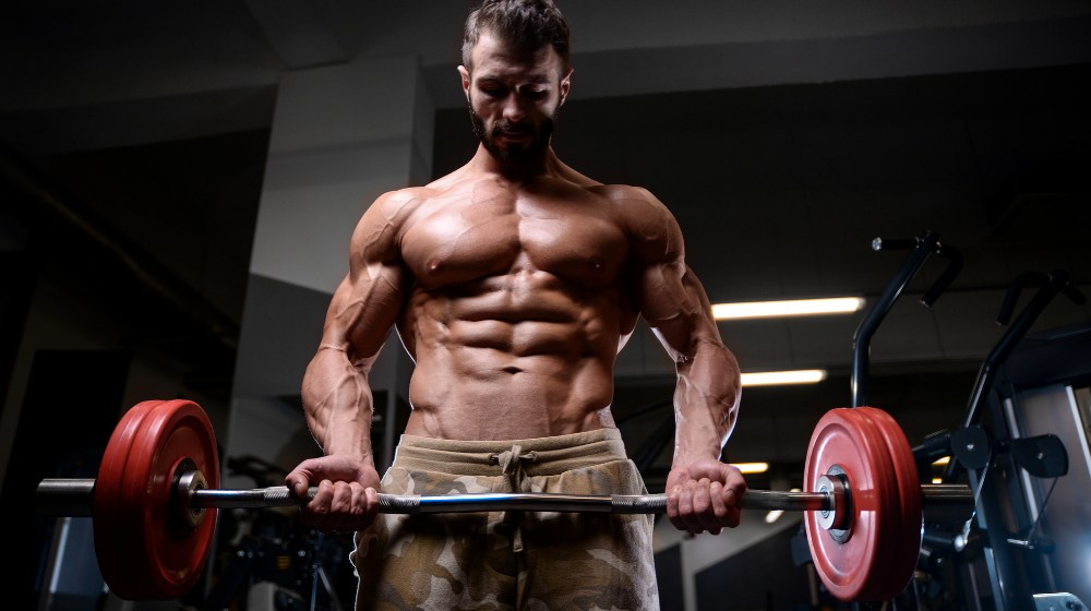Feature   Primary Workout Routine From a Pro   V Shred Fitness