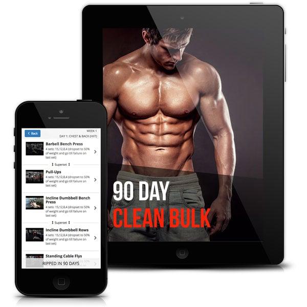 clean-bulk-program